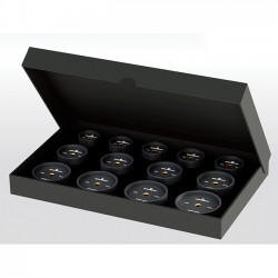 Set of 13 Reversible Synthetic Dies / Bezels and Snap Cases